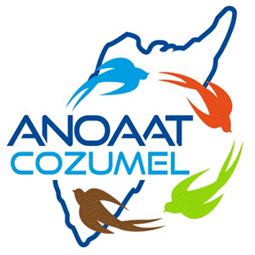 cropped-ANOAAT-LOGO2.png